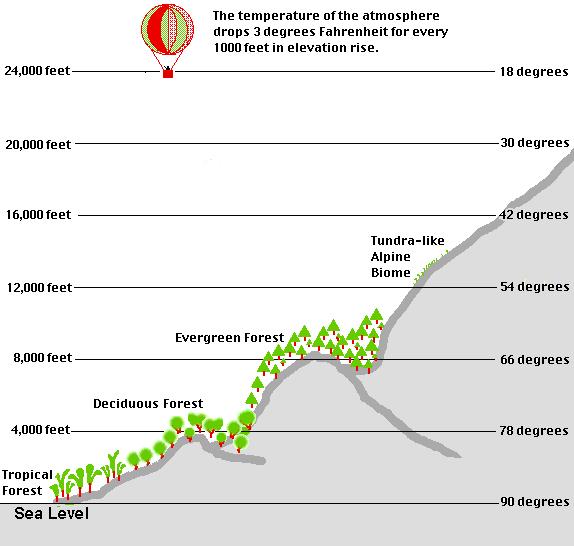 Lopez Island Elevation Map